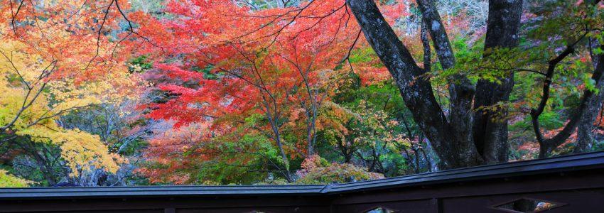 秋保自然公園の写真で「また来てください。」カードを作りました。