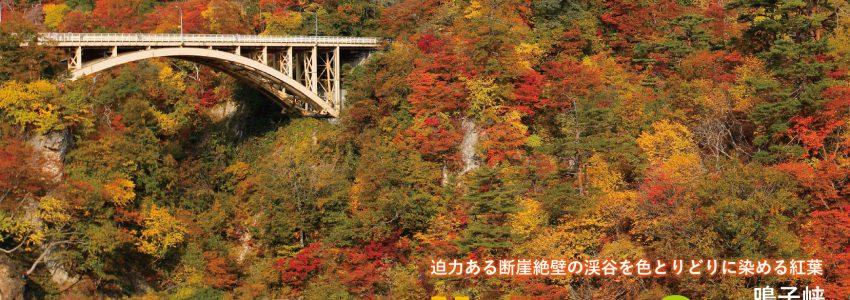 鳴子峡の紅葉の写真でDMを作りました。
